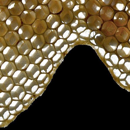 Ondulations hexagonales00052