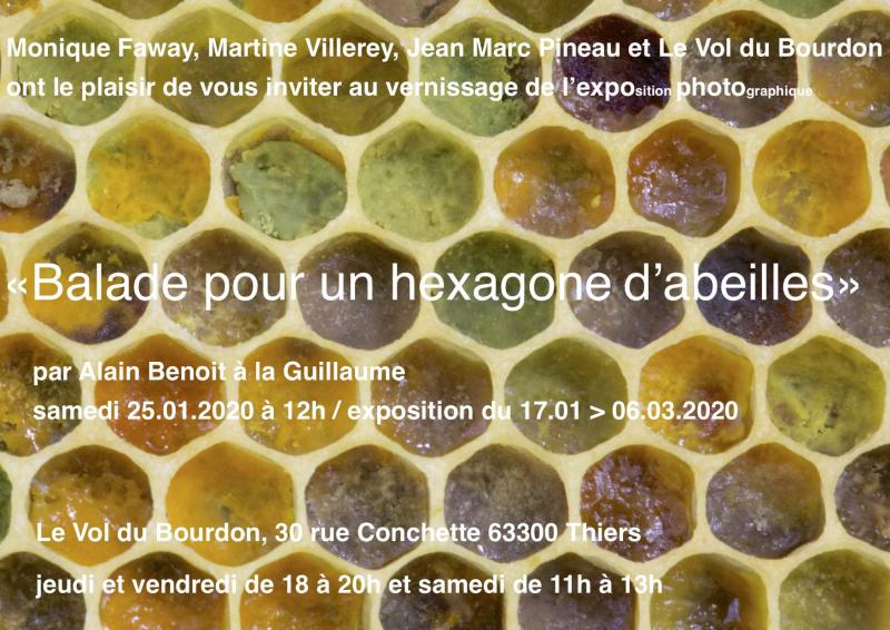 Vol du Bourdon  vernissage N°4  25:01:20 Balade pour un hexagone...