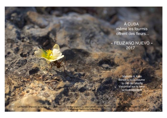 VŒUX 2017  la cité de l'abeille à Cuba !