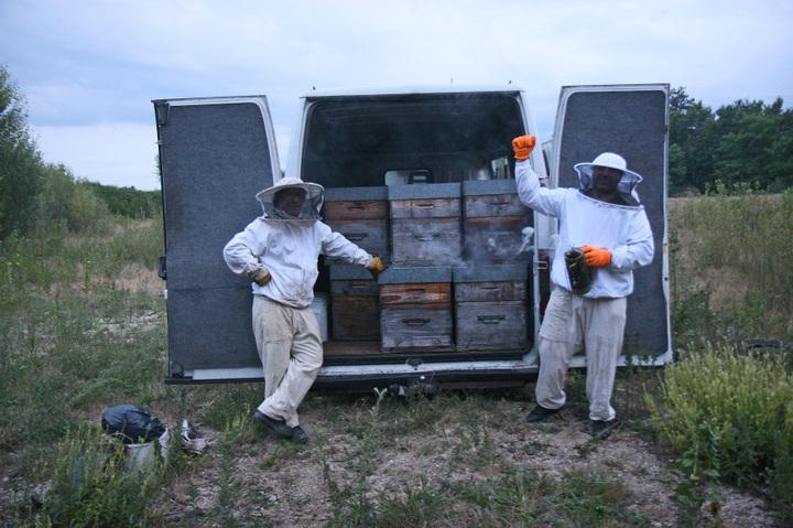 Jcsalat_apiculteurs_014_a